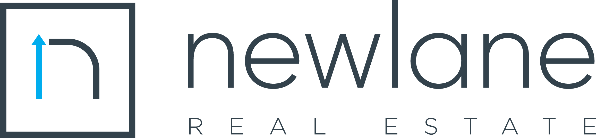 Newlane Real Estate