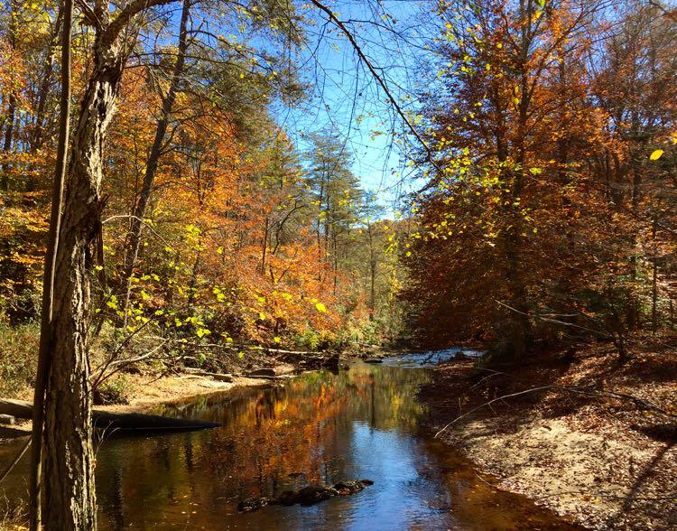Prince William County - , Virginia